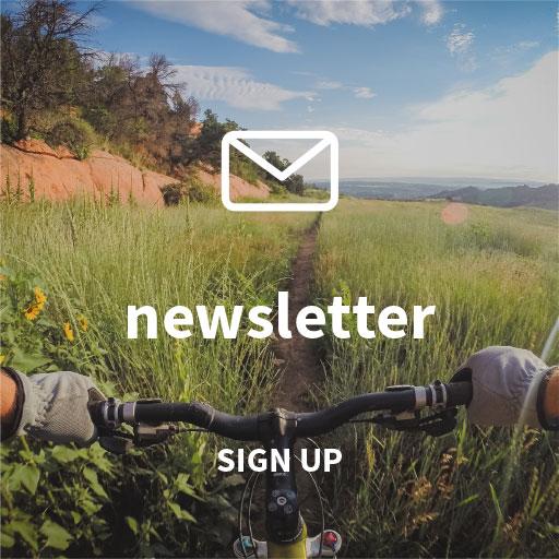 social-newsletter