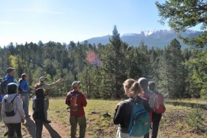 Saturday Adventure- Ring the Peak Trail/Limber Pine Trail-Catamount Ranch Open Space